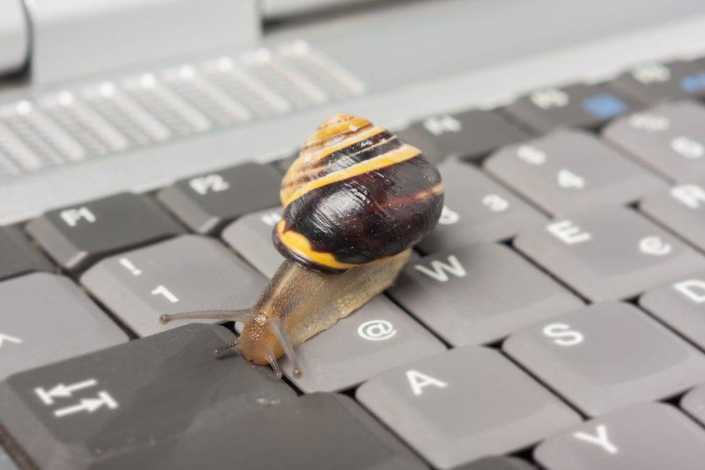 slak op computertoetsenbord